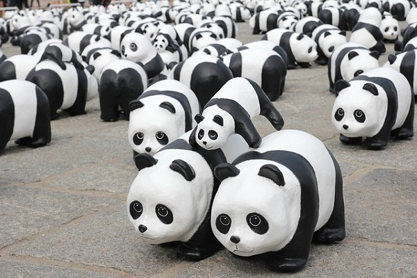 The Possible Impacts Of Panda Becoming A Core Google Algorithm