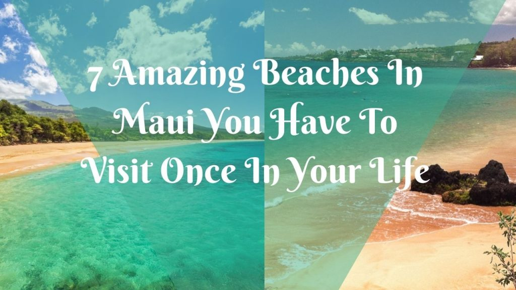 7 Amazing Beaches In Maui You Have To Visit Once In Your Life